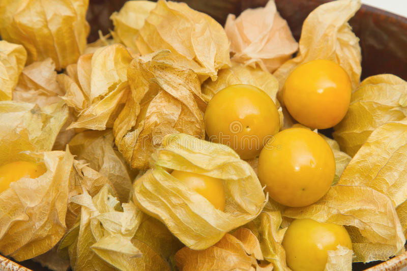 Coqueret comestible (Physalis), fruit sain photos stock