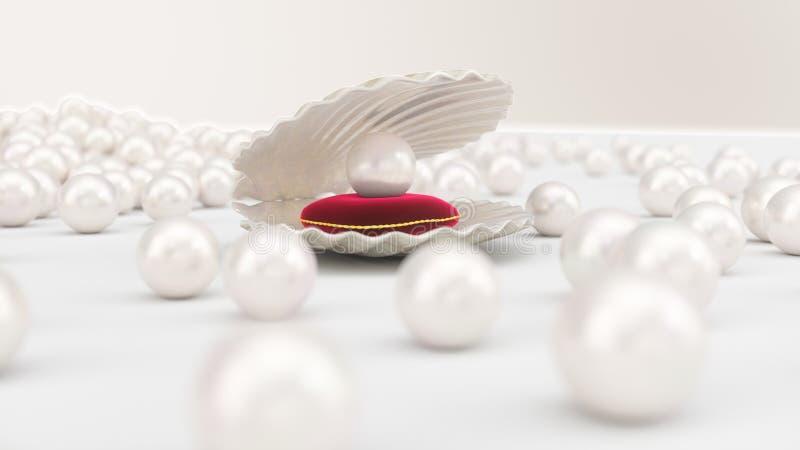 Coquillage avec des perles ? l'int?rieur sur l'oreiller rouge de velours Gemmes, les bijoux des femmes, perles de nacre Pour votr illustration de vecteur