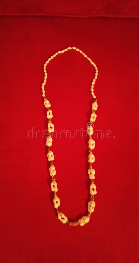 Coquillage neckless photo stock