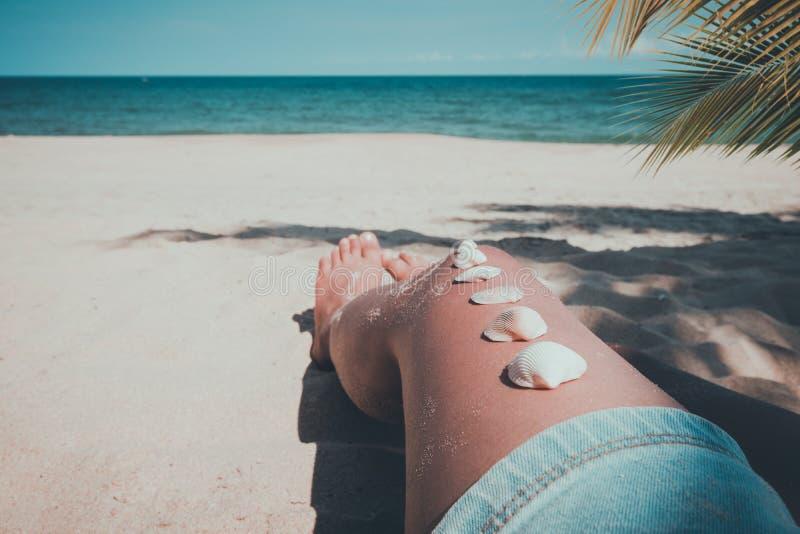 Coquillage sur la jambe bronzée de fille à la plage tropicale en été images libres de droits