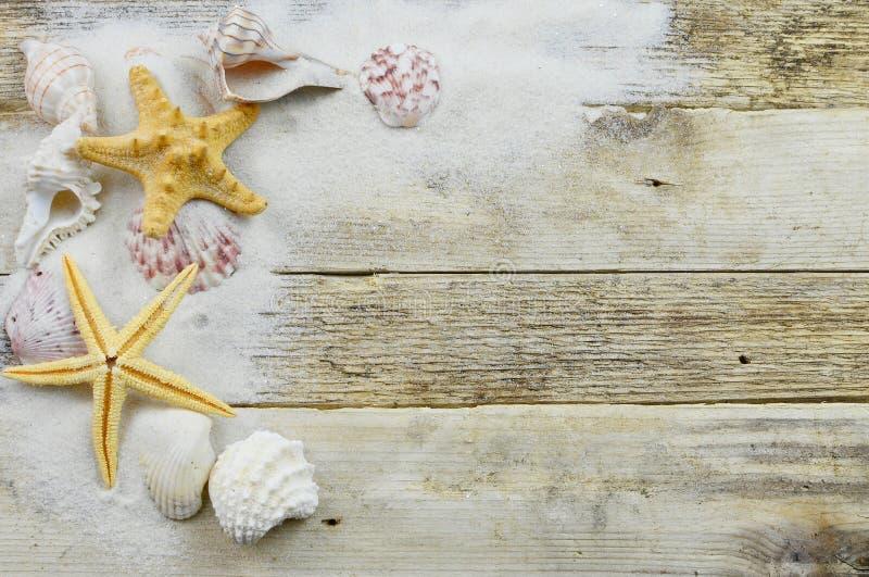 Coquillages, étoiles de mer et sable sur un fond en bois rustique avec l'espace de copie photos stock