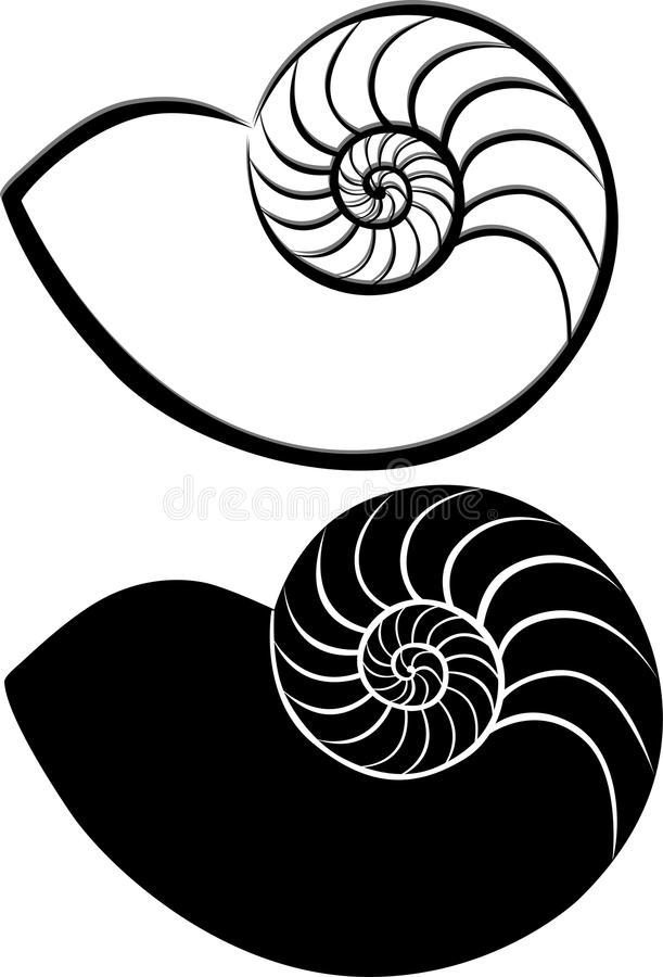 Coquillages de Shell illustration stock