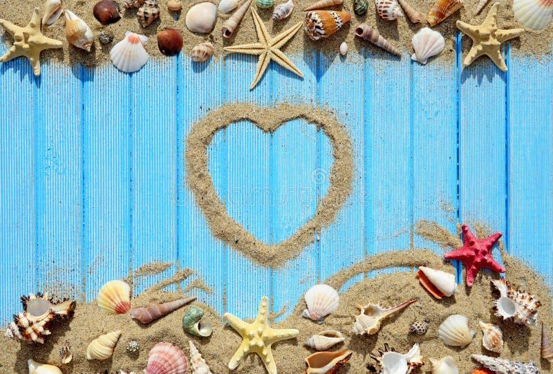 Coquillages et étoiles de mer sur un fond en bois bleu photo libre de droits