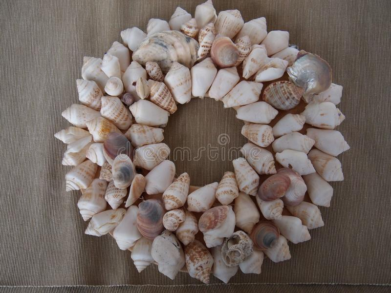 Coquillages rayés en cercle photographie stock