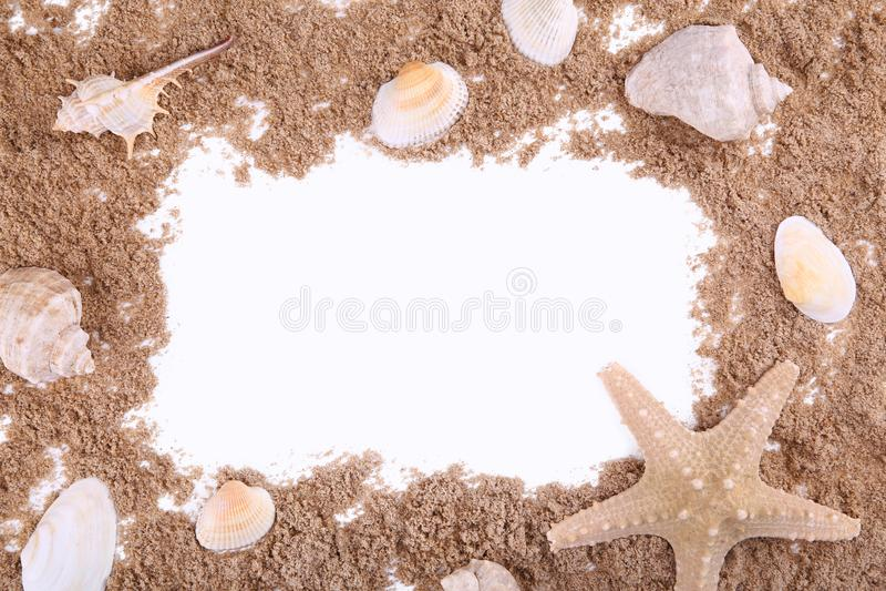 Coquillages sur une pile du sable d'isolement au-dessus de blanc, cadre image stock