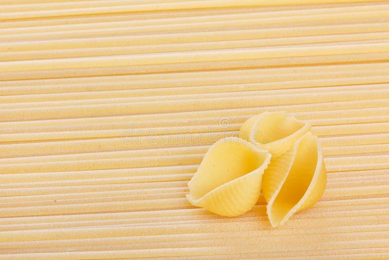 Coquille de coque sur le fond de spaghetti images libres de droits