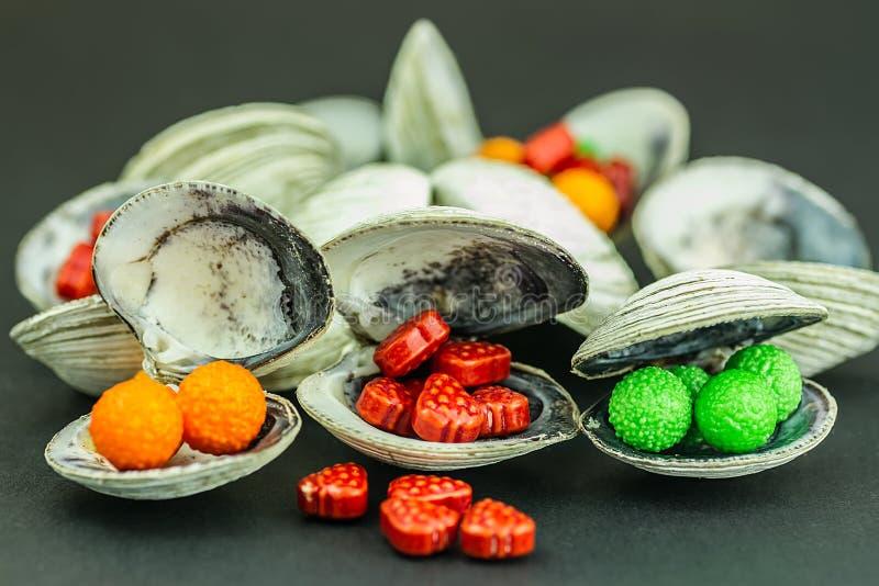 Coquille de sucrerie photos libres de droits