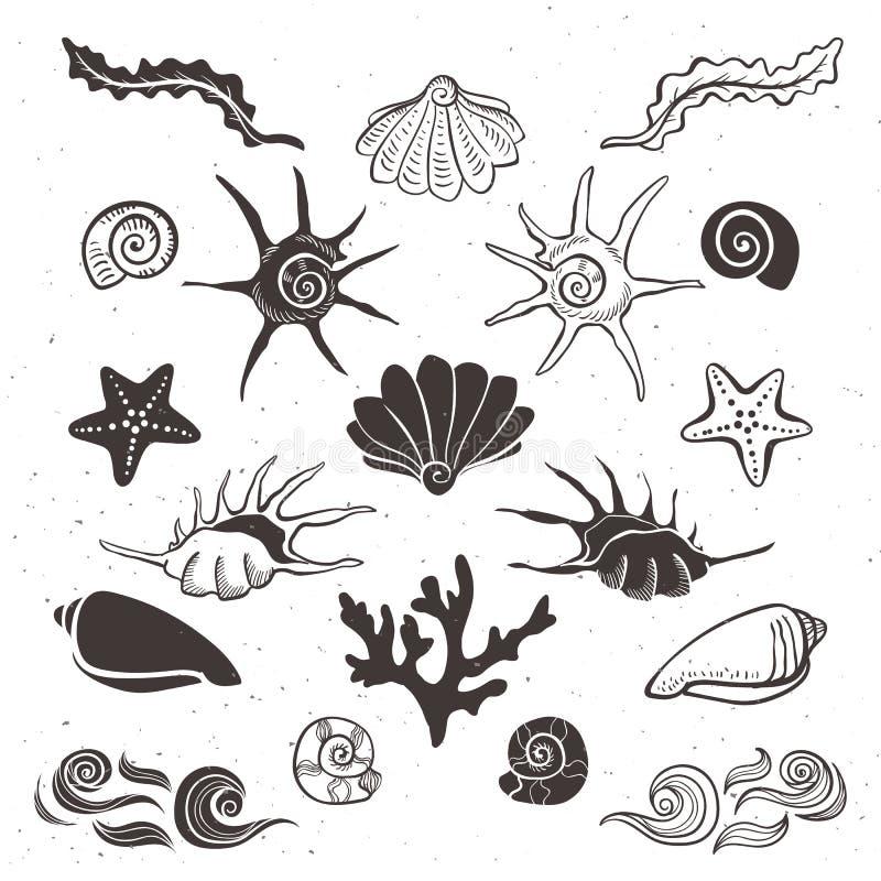 Coquilles, étoiles de mer, algue, corail et vagues de mer de vintage illustration libre de droits