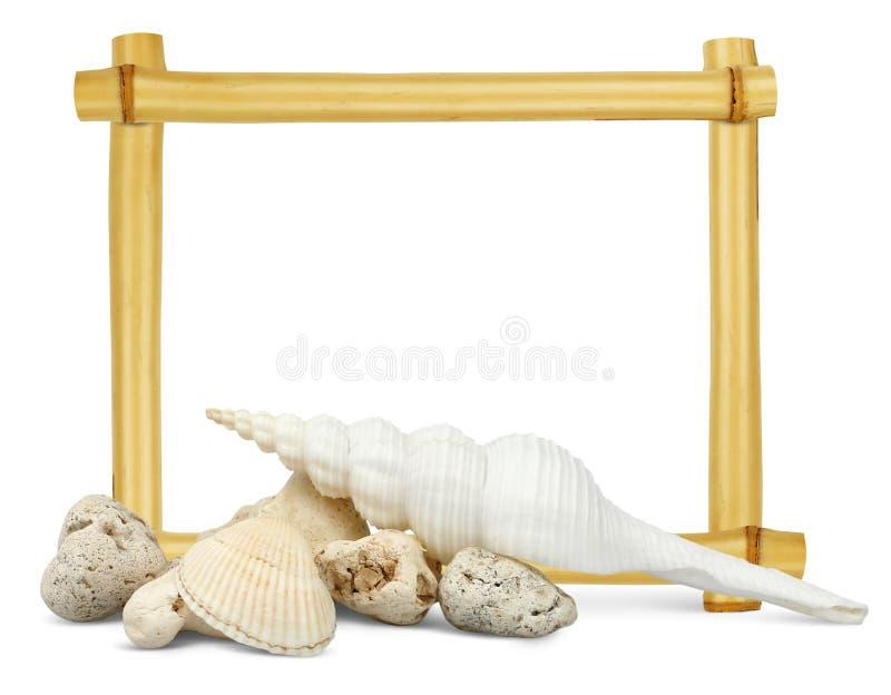 Coquilles avec le cadre en bambou vide derrière image stock
