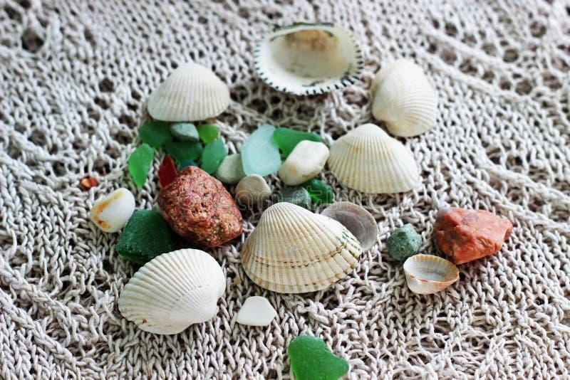 Coquilles de mer, pierres images libres de droits