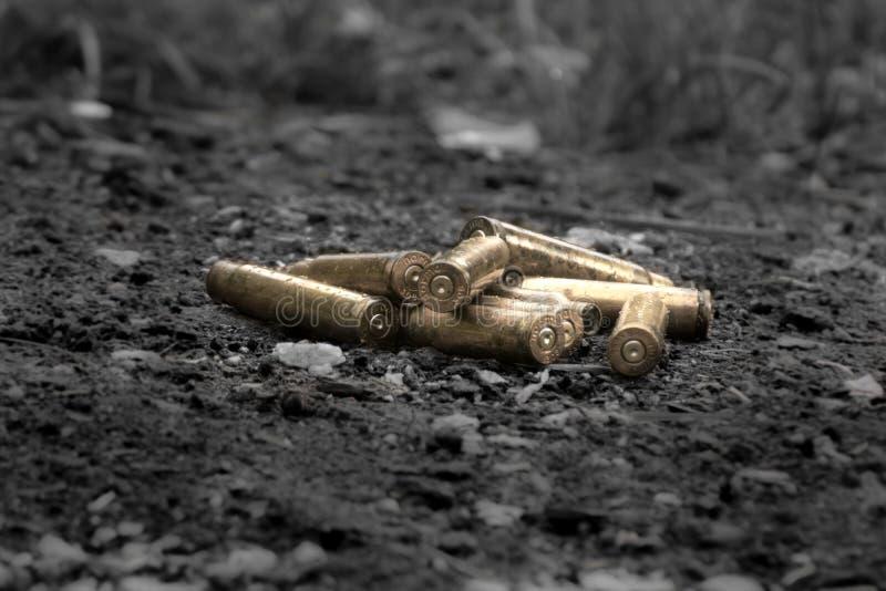 Coquilles en laiton d'arme à feu photos libres de droits