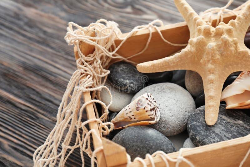 Coquilles et pierres de mer dans la boîte en bois, plan rapproché photo stock