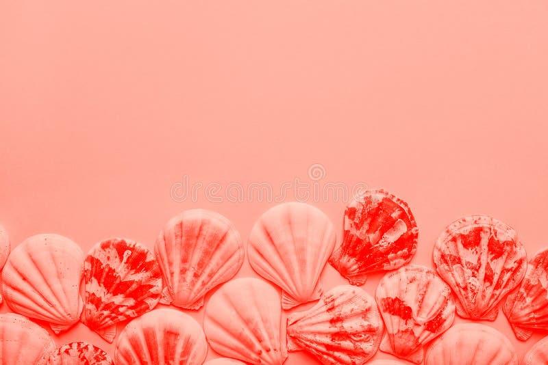 Coquilles rondes plates de mer disposées dans le cadre de frontière dans la couleur de corail vivante à la mode sur le fond rose  image libre de droits