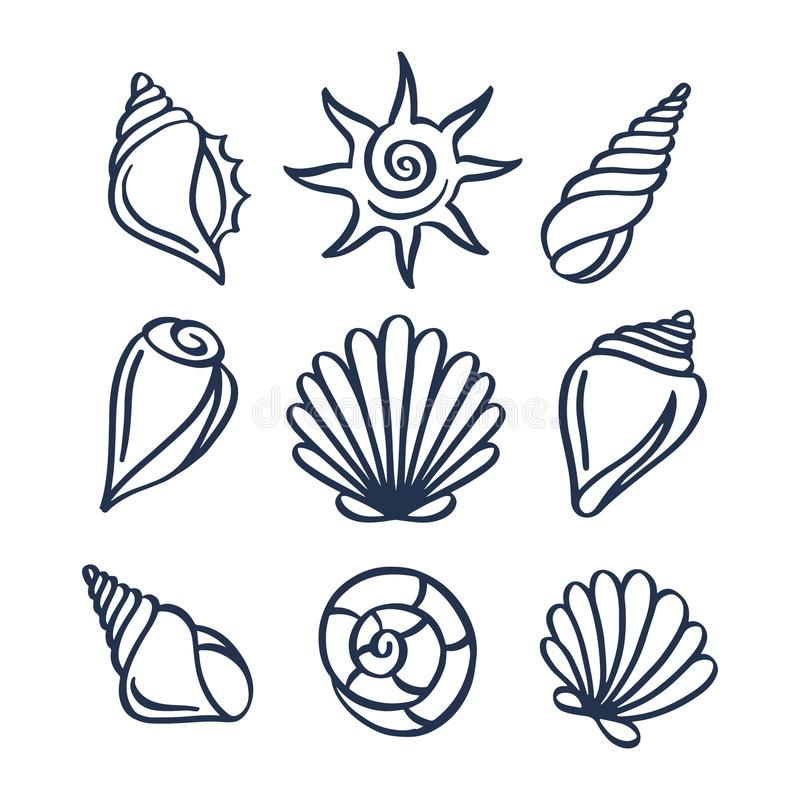 Coquilles tirées par la main de mer réglées Illustration de vecteur illustration stock