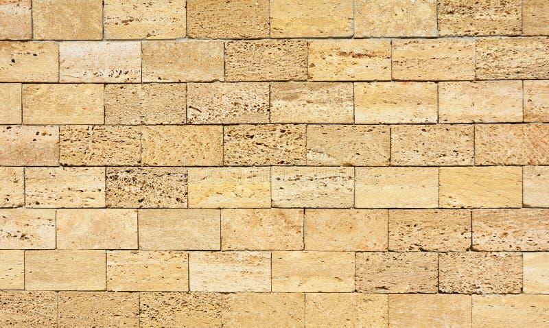 Coquina,多壳房子石灰石墙壁构造了背景 免版税图库摄影