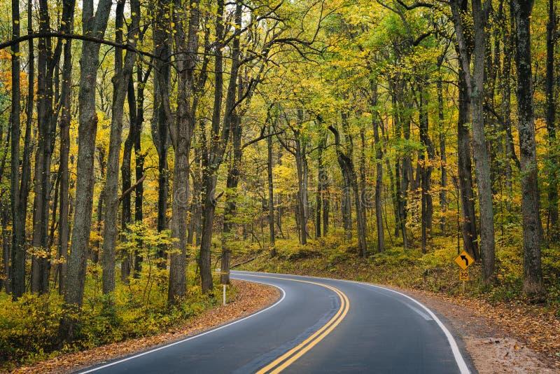 Cor adiantada do outono ao longo da movimenta??o da skyline no parque nacional de Shenandoah, Virg?nia imagem de stock