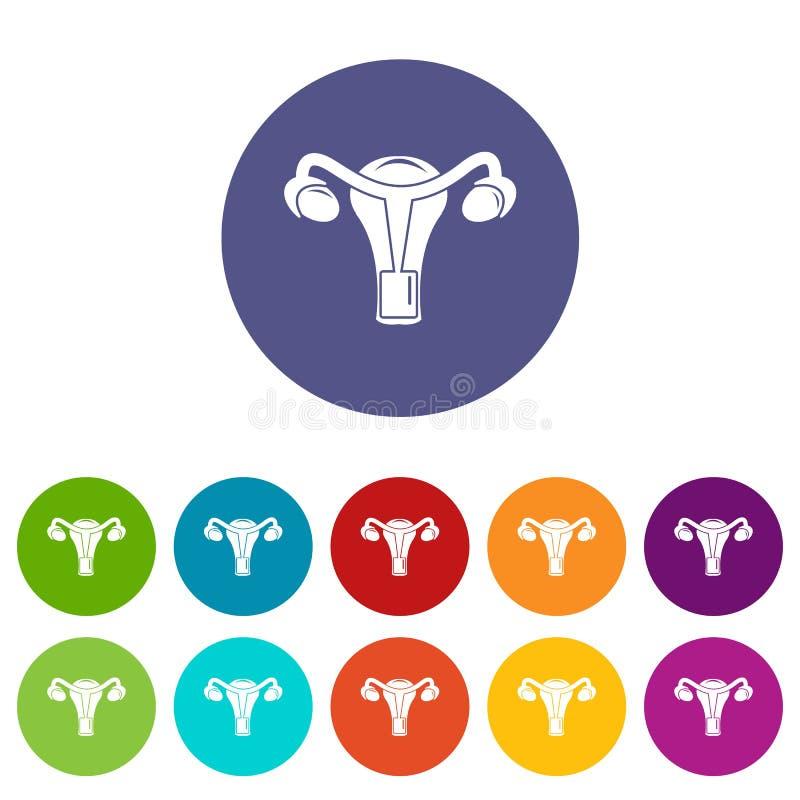 Cor ajustada do vetor do órgão reprodutivo ícones fêmeas ilustração royalty free