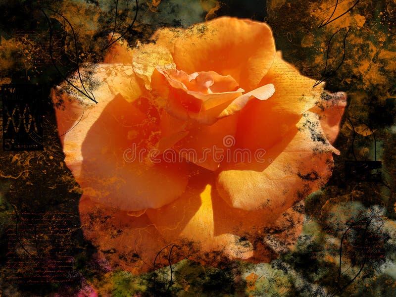 A cor alaranjada do Grunge aumentou conceito artístico amarelo do fundo do projeto do cartaz da flor imagens de stock