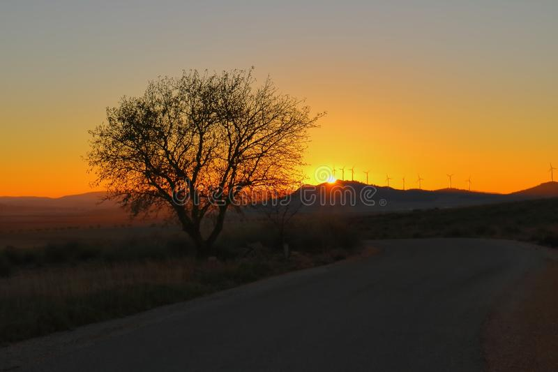 Cor alaranjada no nascer do sol foto de stock royalty free
