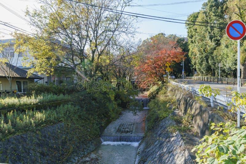 Cor bonita da queda perto de Omi Jingu fotografia de stock royalty free