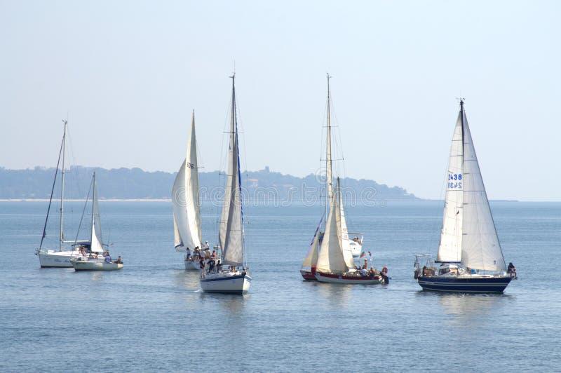 Cor Caroli-regata Segeljachten lizenzfreie stockbilder