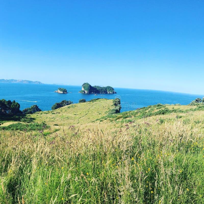 Cor da beleza de Nova Zelândia Waikato da ilha imagem de stock