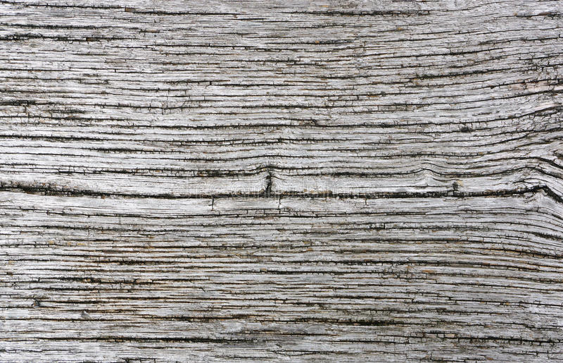 Cor de madeira do cinza do estilo do vintage da textura do fundo imagens de stock
