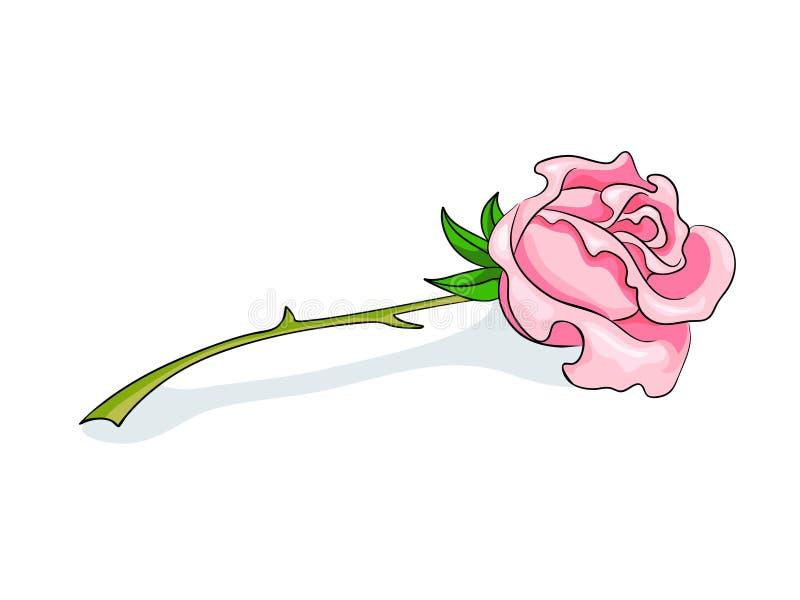 A cor-de-rosa bonita levantou-se ilustração stock