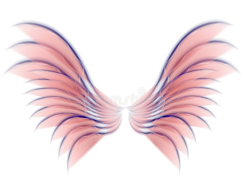 Cor-de-rosa das asas do pássaro ou do Fairy do anjo ilustração stock