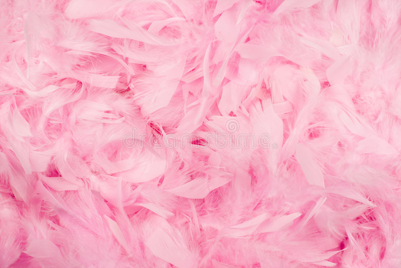 A cor-de-rosa empluma-se o fundo imagem de stock royalty free