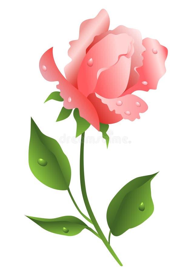 A cor-de-rosa levantou-se ilustração do vetor