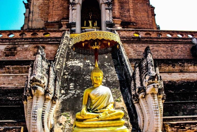A cor de Tailândia imagem de stock