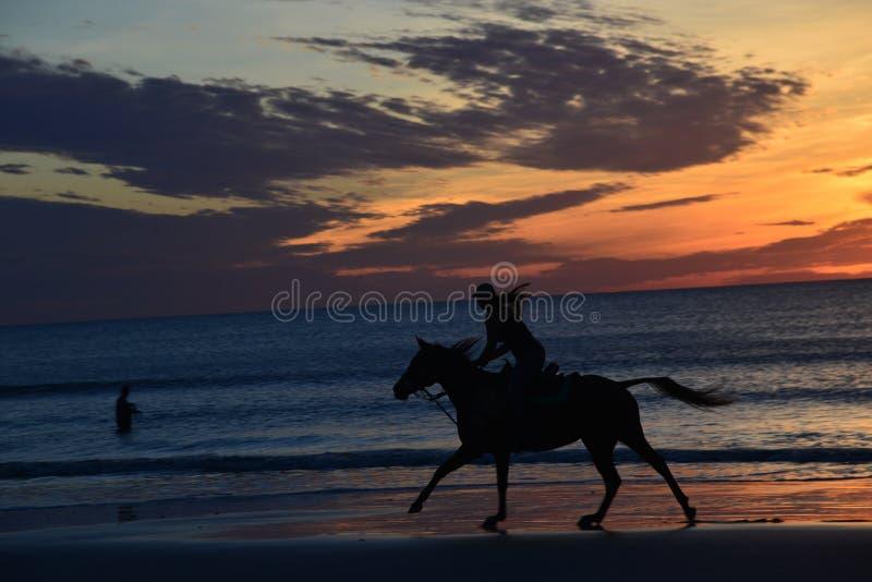 A cor do nascer do sol envolve um grupo pequeno de cavaleiros de horseback fotografia de stock royalty free