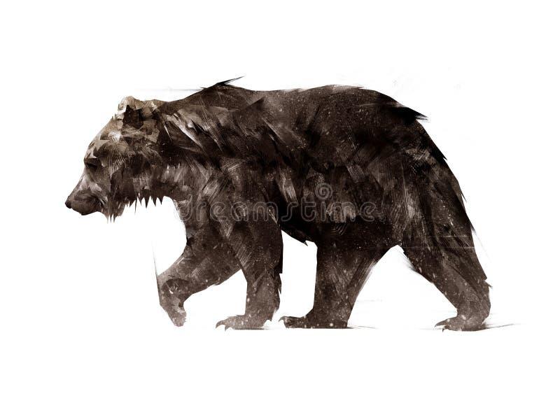A cor pintou um lado animal de passeio do urso ilustração royalty free