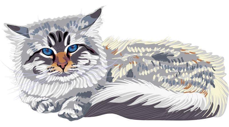 Cor-ponto Siberian do gato do esboço (Neva Masqu ilustração royalty free