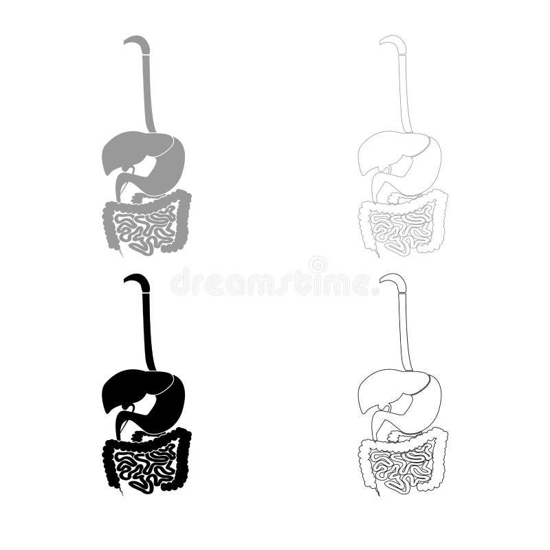 Cor preta cinzenta ajustada do esboço do ícone do sistema digestivo ilustração do vetor