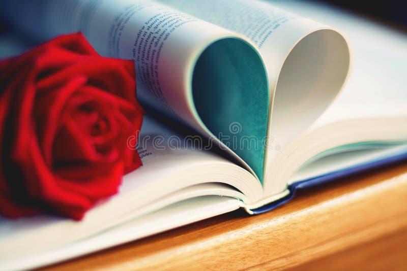 A cor vermelha bonita aumentou no rolo do livro na forma do coração, tom macio da cor, conceito doce da apresentação do Valentim imagem de stock