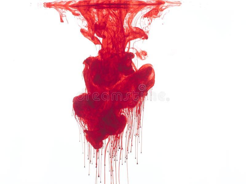 Cor vermelha na água fotos de stock