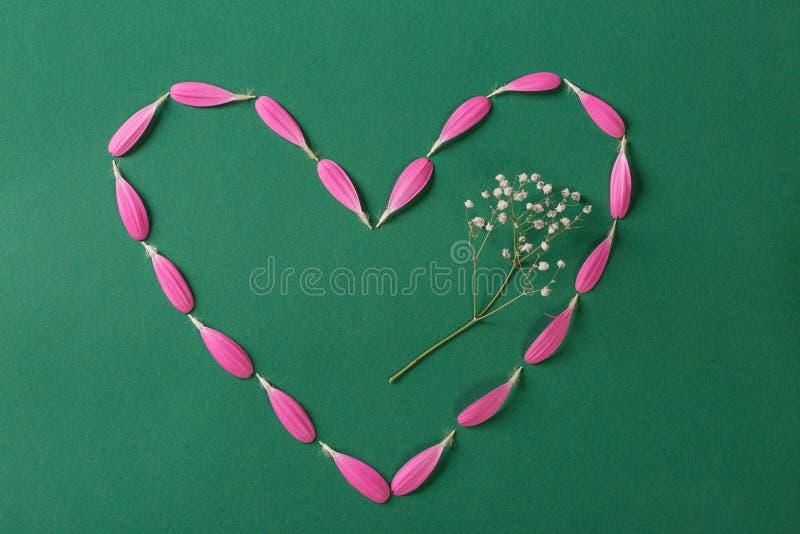Coração cor-de-rosa feito dos pestals do gerbera no fundo verde com flor branca imagem de stock