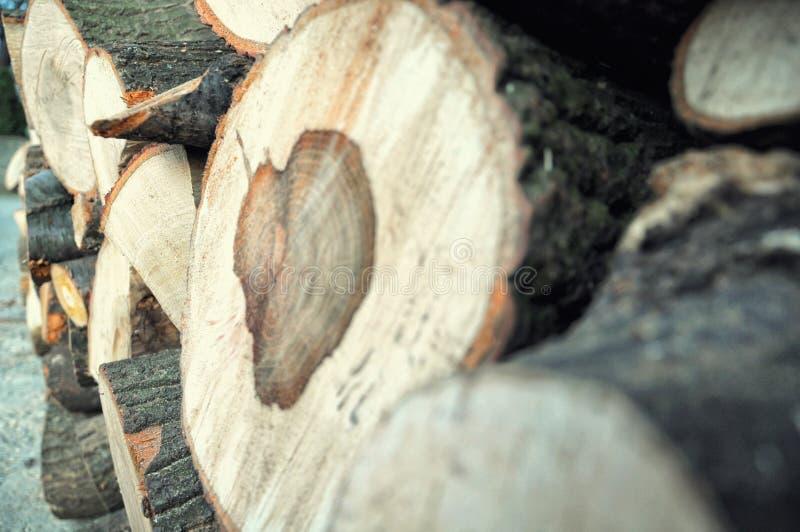 Coração da madeira imagem de stock
