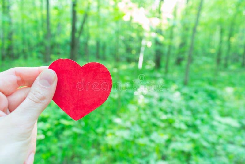 Coração da posse da mão imagem de stock