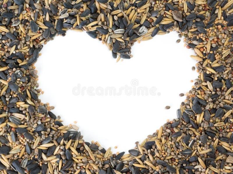 Coração da semente do pássaro foto de stock royalty free