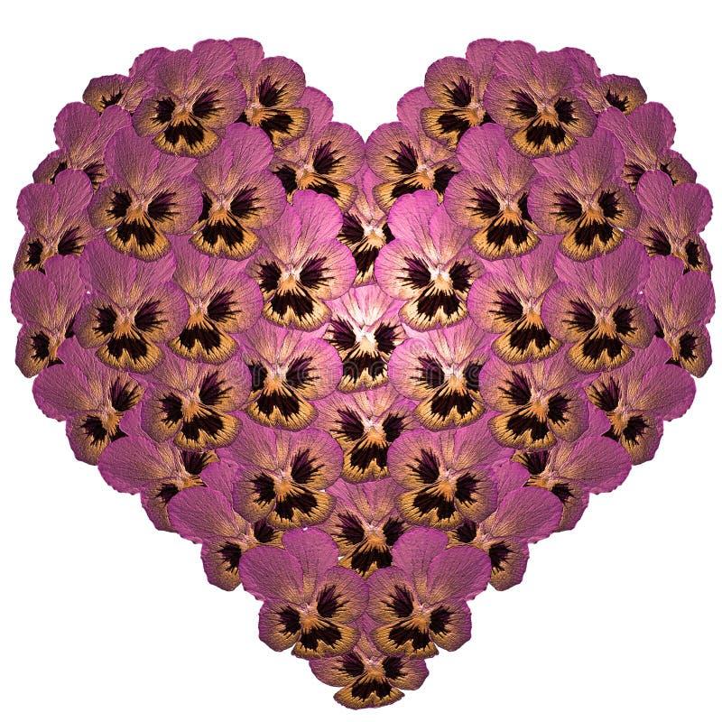 Coração das flores imagem de stock