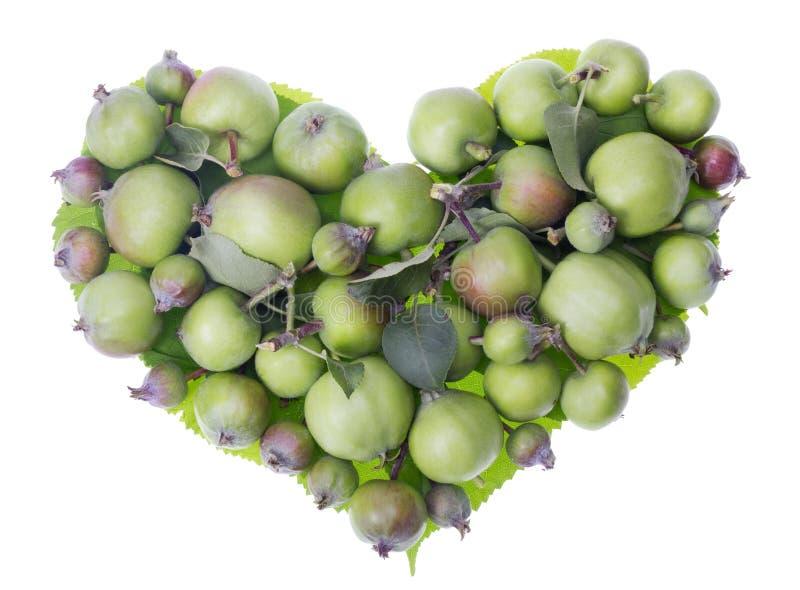 Coração das maçãs foto de stock