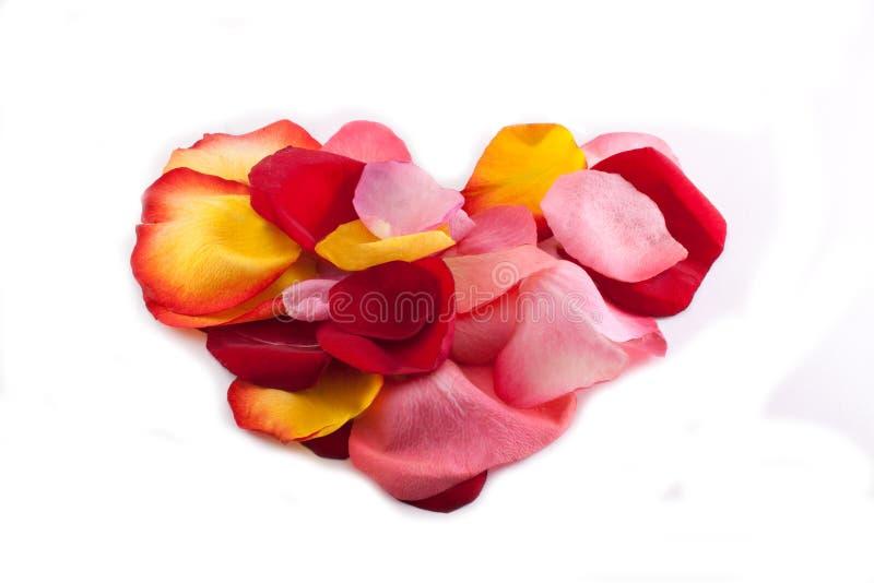 Download Coração Das Pétalas Cor-de-rosa Foto de Stock - Imagem de pétala, levantou: 12810828