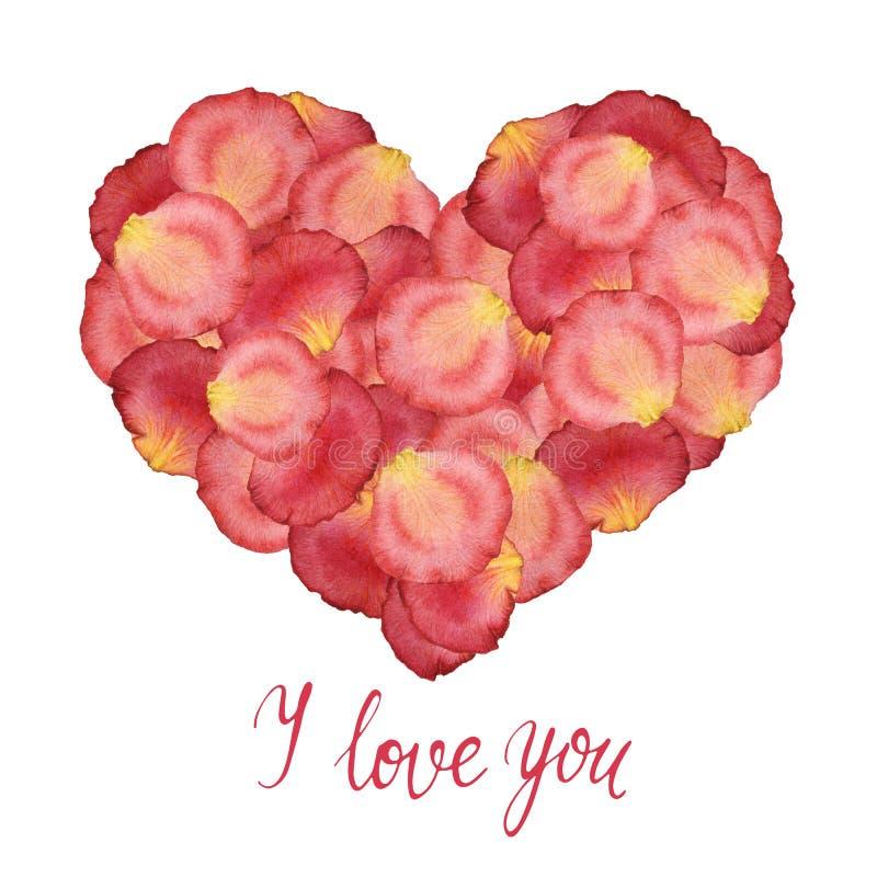 Coração das pétalas do rosa da aquarela das rosas ilustração royalty free
