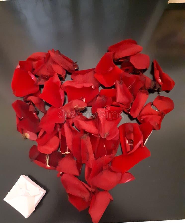 Coração de Rose Petals imagens de stock royalty free