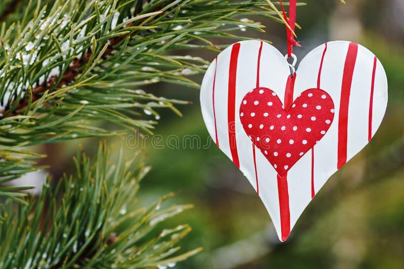 Coração do brinquedo que pendura em uma árvore do inverno fotografia de stock royalty free
