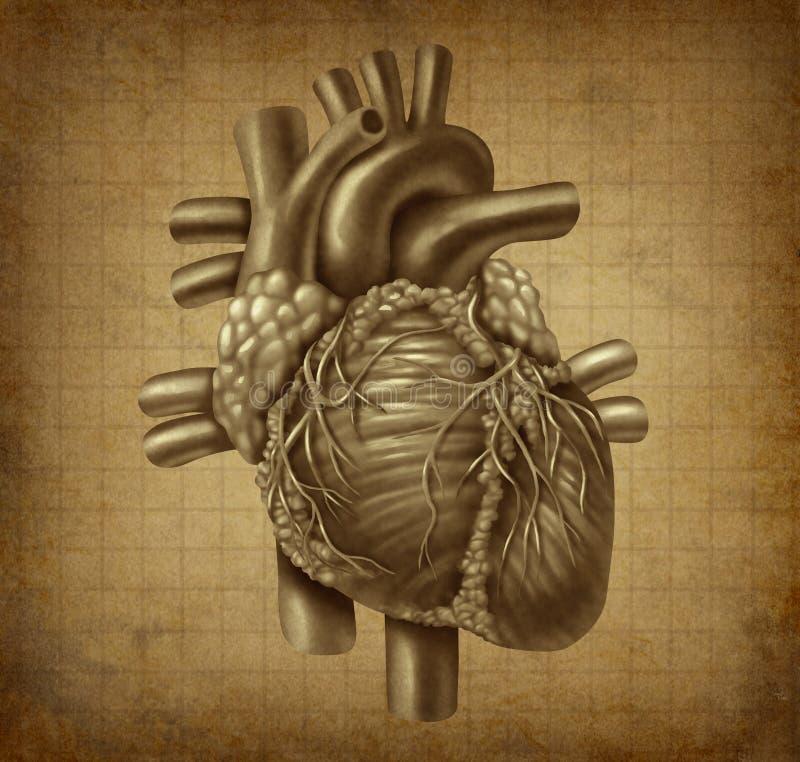 Coração do ser humano de Grunge ilustração royalty free