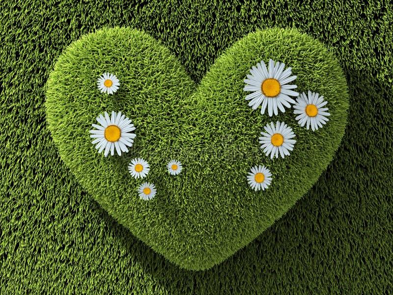 Coração do sumário um na grama ilustração stock